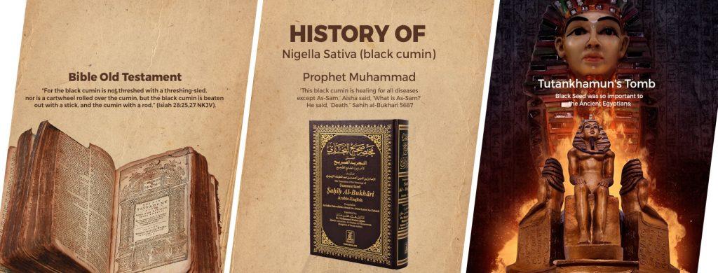 Nigella Sativa - A Natural Plant's Centuries Long History